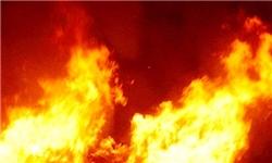 آتشسوزی اراضی کشاورزی منطقه چهاردانگه مهار شد/ وسعت آتش، ۱۵ هکتار
