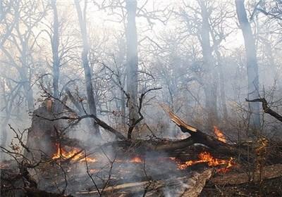 آتش سوزی جنگل های حد فاصل بخش دودانگه و چهاردانگه