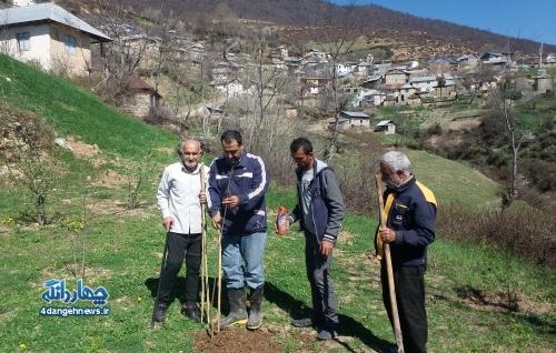 ایجاد فضای سبز در روستای