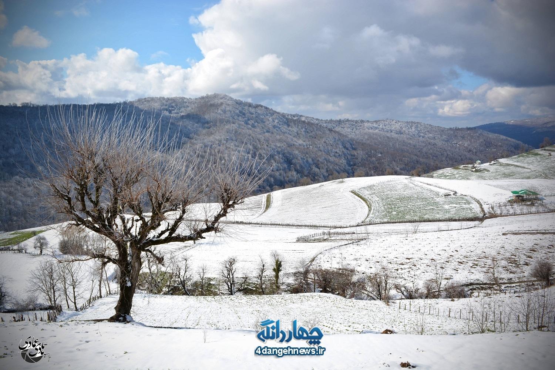 زیبایی طبیعت زمستانی چهاردانگه از لنز دوربین سید هادی عمادی (بخش اول)