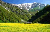 بهشت اردیبهشت ایران متولی ندارد