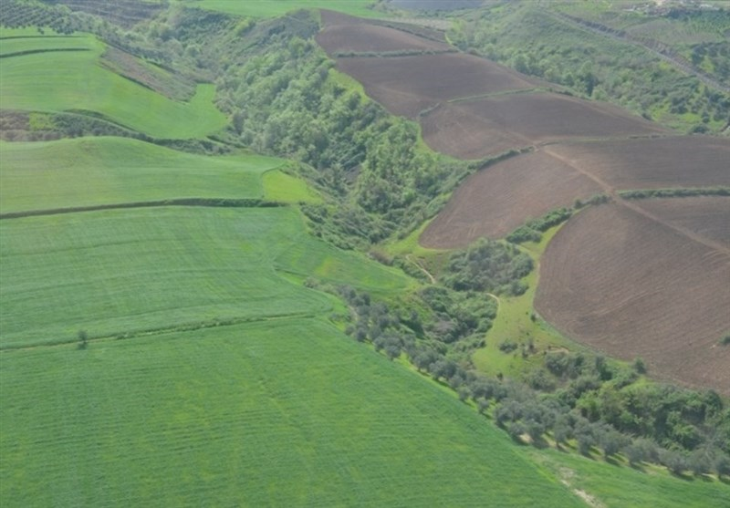 زمینخواری 16 میلیارد ریالی در مازندران کشف شد