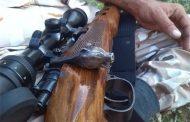 دستگیری شکارچیان غیر مجاز در کیاسر