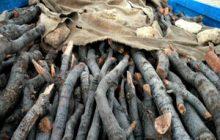 کشف چوب های قاچاق در جاده کیاسر