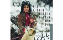 اکران مستند « پاپلی » به عنوان اثر بومی مازندران در کتابخانه ملی ایران