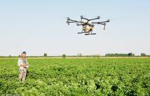 نیمی از فارغ التحصیلان کشاورزی بیکارند