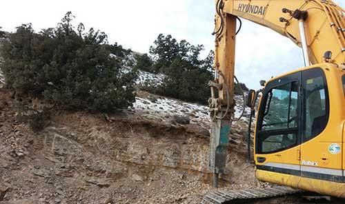 جولان بیل مکانیکی در چهاردانگه؛ درختان ممنوع القطع
