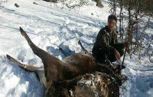 دستگیری شکارچیان هنگام انتقال لاشه گوزن در منطقه چهاردانگه