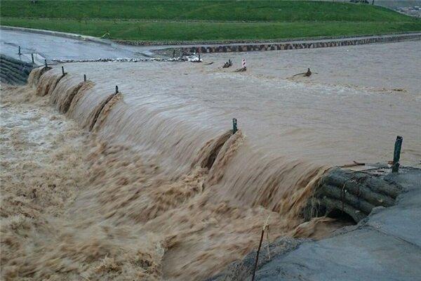 ۱۰۰۰ هکتار از اراضی زراعی و باغی دودانگه ساری دچار خسارت شد
