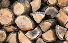 کشف ۵ تن چوب جنگلی قاچاق در چهاردانگه