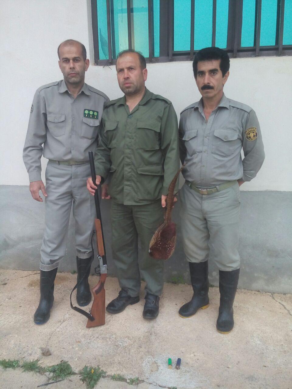 دستگیری شکارچیان غیر مجاز در روستاهای نوکنده،پروریج آباد و اروت + تصاویر