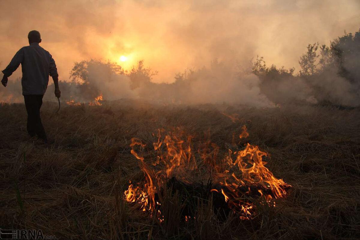 آتش ناچاری، تهدید جدی عرصه های طبیعی مازندران