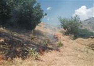 مهار آتش سوزی در پارک ملی کیاسر