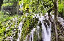 فیلم: آبشار