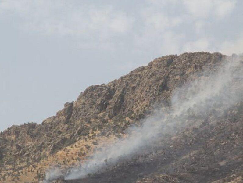 آتش سوزی مراتع بالادست شهرستان آمل مهار شد