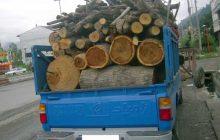 کشف 3 تن چوب جنگلي قاچاق در دودانگه