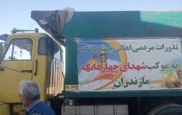 گزارش تصویری از فعالیت موکب شهدای چهاردانگه در مرز مهران