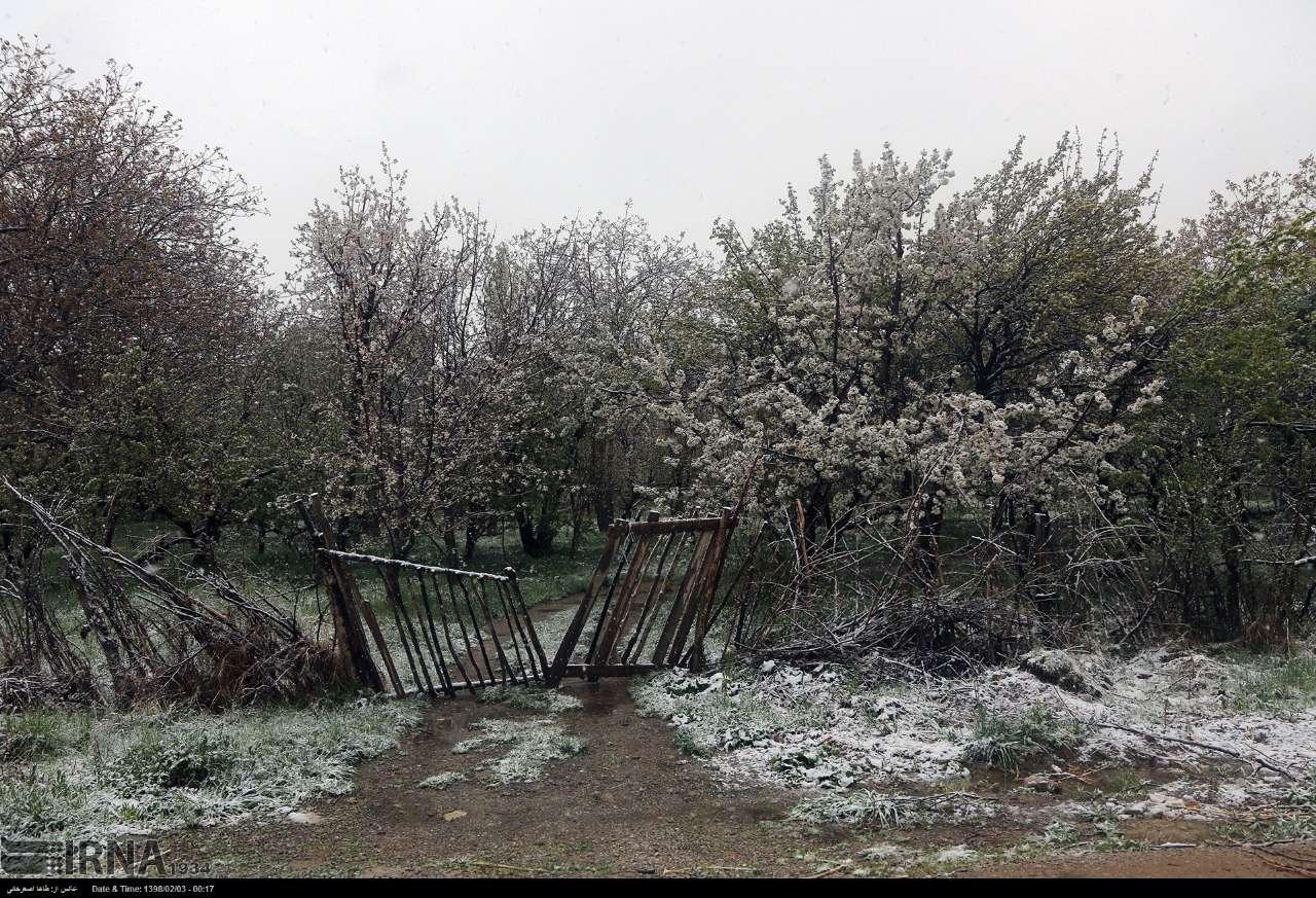 هوای سرد تا پایان هفته آینده در مازندران ماندگار است