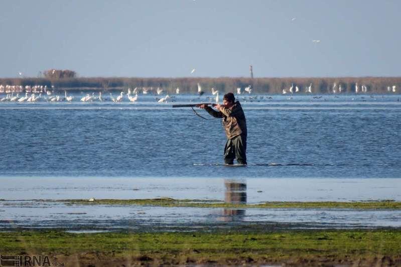 به هدف نخوردن ۲۶۳ مورد اقدام به شکار در مازندران