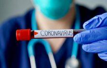 جوسازی سودجویان خطرناکتر از ویروس کرونا