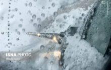 گزارش تصویری: بارش برف و کولاک در محور کیاسر به سمنان
