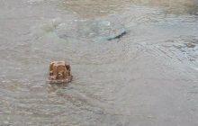نفوذ سامانه سرد و بارشی از اواسط هفته در آسمان مازندران