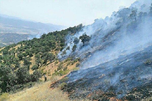 هشدار محیط زیست نسبت به آتش سوزی جنگل ها در مازندران