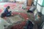 شب هفتم محرم، شب تجلیل از مقام شامخ شهدای چهاردانگه تعیین شد