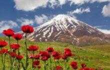 کوه دماوند شبانه از وقف خارج شد + تصویر