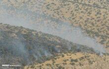 آتش سوزی پناهگاه حیات وحش میانکاله مهار شد